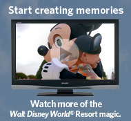 Walt Disney World videos